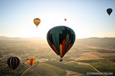 Hot Air Ballooning in California. This time over someplace prettier than scrubby ranch land.with my kids! Air Ballon, Hot Air Balloon, Balloon Balloon, Balloons, California Attractions, California Travel, Best Wineries In Napa, Air Balloon Festival, San Diego Travel