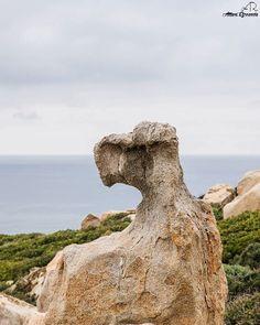 by http://ift.tt/1OJSkeg - Sardegna turismo by italylandscape.com #traveloffers #holiday | Ad Aprile l'escursione a Capo Pecora fino al Giardino di rocce di Manago. Ready?  PHOTO BY RICCARDO ATZORI. #siclus #escursioni #visiteguidate #instahiking #hikingadventures #hikinguides #igersulcis #visitsulcisiglesiente #visitsulcis #igerscagliari #igersoristano #igersolbia #igersogliastra #hiking #giardinodiroccedimanago #capopecora #hikingworld #hikingtrail #ilovehiking #lanuovasardegna…