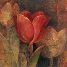 Tulip Reflection Canvas Art - Albena Hristova (24 x 24)