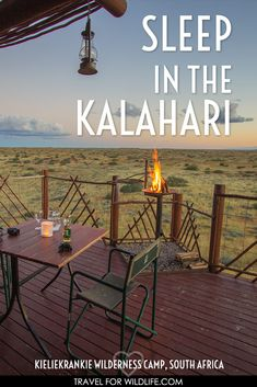 Staying in the Kalahari desert is a magical experience! When you visit South Africa, don't forget to stay in the Kgalagadi Transfontier Park, watch some Kalahari desert animals, and enjoy a Kalahari safari from the comfort of a wilderness camp. Uganda, Visit South Africa, Desert Animals, Safari, Namibia, Lakefront Homes, Africa Travel, Travel Guides, Travel Tips