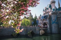 Rediscovering the Magic of Disneyland: What's Your First-Time Story? Jurassic Park, Universal Studios, Magic Kingdom, Disneyland Los Angeles, Cool Places To Visit, Places To Travel, Pier Santa Monica, Places Around The World, Around The Worlds