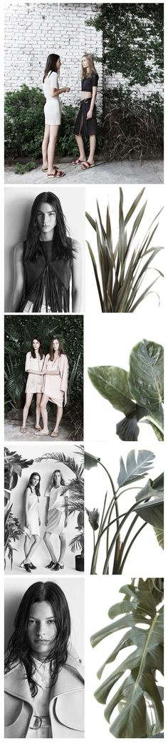 Zara Spring Summer 2014. fashion, design, minimal, simplicity, minimalist, minimalism- background plants + Palm prints