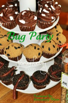 Bug Birthday Party Plan - A 30-page guide to creating this budget friendly party for under one hundred dollars. $19.95, via Etsy.