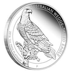 A majestic king of the skies, Australia's Wedge-tailed Eagle takes pride of place on this pure platinum coin | Australian Wedge-tailed Eagle 2016 1oz Platinum Coin