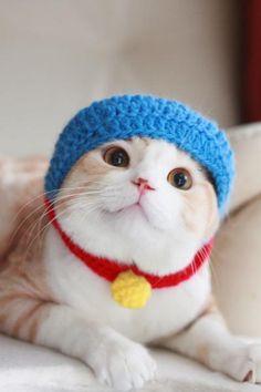 Doraemon Kitty!