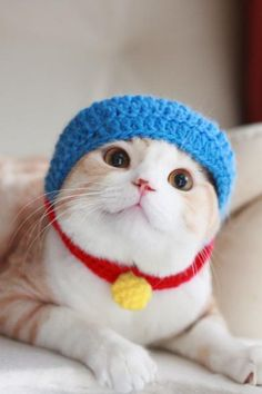 Doraemon Kitty!