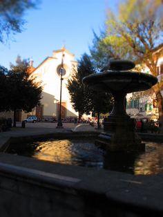 Piazza Santo Spirito, Florence (the square I lived in)