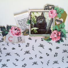 Hey there! It's Jo with my monthly Creative Team projects for the Hey Little Magpie blog. I've been playing with the new Maggie Holmes Bloom collection.