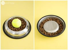 Some dogs are fast eaters, inhaling their food more than chewing and swallowing it. Eating too quickly can cause stomach issues and can easily result in vomiting. Slow your dog down by placing an object in their food bowl as an obstacle. They have to work around the object, forcing them to eat slower. One popular method is to place a small bowl upside down in the center of their food dish, which keeps the food around the outside of the bowl where it's more difficult to reach. 12 Life Hacks…