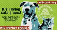 Adopt from Multnomah County for the cost of a license this month!