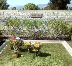 images about Cemetaries, Grave Stones, Final Resting Place . Cemetery Monuments, Cemetery Headstones, Cemetery Art, Paul Walker, Famous Tombstones, Famous Graves, Famous Stars, In Loving Memory, Grave Markers