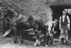 Old photograph of a Blacksmith in Perthshire , Scotland . All photographs are copyright of Sandy Stevenson, Tour Scotland, and may not . Scotland History, Scotland Tours, Vintage Horse, Vintage Farm, Old Pictures, Old Photos, Vintage Photographs, Vintage Photos, Edinburgh Tours
