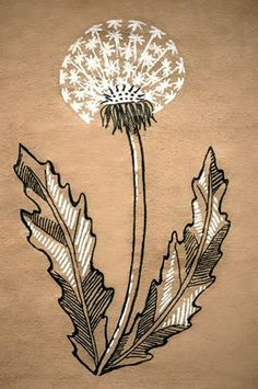 Dandelion by Euglena Botanical Drawings, Botanical Prints, Art Painting Images, Plant Insects, Sketchbook Drawings, Toned Paper, Plant Illustration, Art Series, Drawing For Kids