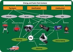 Energy and Fuels from Biomass
