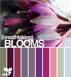 Love this colour palette