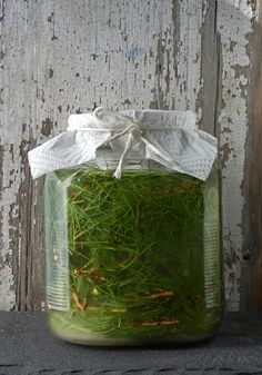 Wild Soda of the day - White fir and Pine needles, tad of lemon, local sage honey and Juniper wild yeast starter. Fermentation for 24hrs then bottling. If you ask what pine, I dunno exactly, it's the one that tasted the best yesterday in the local mountains, all pines are edible. The concoction is 80% pine and 20% white fir. www.urbanoutdoorskills.com