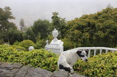 #2013 #monserrate.bogotá.colombia ...y a los 3.200mts tbn me encontraron..