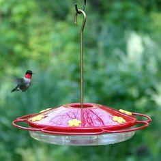 Perky Pet Hummingbird Oasis Plastic Feeder - 221