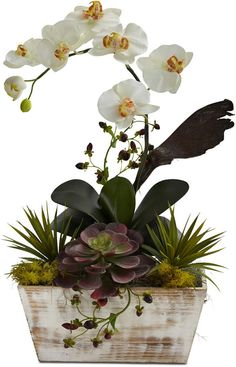 Nearly Natural Orchid & Succulent Garden with White-Washed Planter