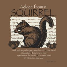 Advice From A Squirrel Shirts, Sweatshirts and Hats Advice From A Squirrel: Look both ways when you cross the road Sassy Quotes, Life Quotes Love, Animal Spirit Guides, Spirit Animal, Earth Sun And Moon, Sun Moon, Animal Meanings, Animal Symbolism, Squirrel Girl