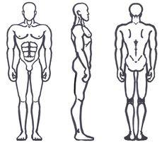 Male Anatomy - Broad Shoulders by sunandshadow