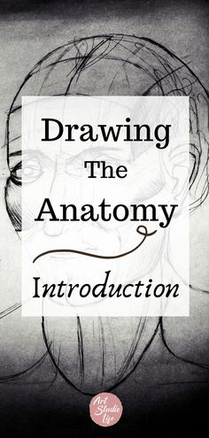 How to learn to draw the human figure. Learn all about what ecorche is and human anatomy and how to draw the figure. Learn the importance of anatomy for artists and how it will help you. Anatomy art books for artists. Figure drawing for beginners. Figure drawing tutorial. drawing for beginners. Anatomy for artists. How to draw people. How to draw people. #howtodraw #learntodraw #anatomyforartists #ecorchedrawing #ecorche #drawingforbeginners #anatomy #howtodrawthefigure Human Face Sketch, Human Figure Sketches, Human Figure Drawing, Figure Sketching, Drawing Tutorials For Beginners, Painting Tutorials, Painting Tips, How To Study Anatomy, Human Anatomy Drawing