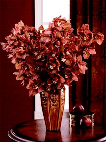 Chocolate Cymbidiums #orchids