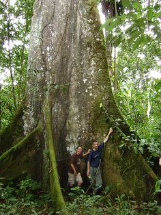 Located at the edge of the Andes, Tena, Ecuador, is in the Amazon Rain Forest