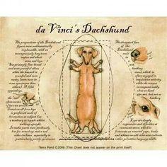 Leonardo da Vinci's Dachshund Humorous Parody Weiner Dog Art Print by Terry Pond Arte Dachshund, Dachshund Love, Daschund, Vintage Dachshund, Dachshund Quotes, I Love Dogs, Puppy Love, Little Mac, Weenie Dogs
