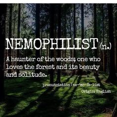 7 beautiful words only nature lovers will understand unique words, love words, unusual words Unusual Words, Weird Words, Unique Words, New Words, Love Words, Nature Words, Nature Quotes, Pretty Words, Beautiful Words