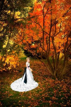@Nicole Rohweder This is gunna be me!!!! omg!!!!   Beautiful fall colors....I'd love a fall wedding!