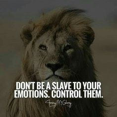 Positive Quotes : Don't be slave to your emotions control them. Positive Quotes : Don't be slave to your emotions control them. Positive Quotes : Don't be slave to your emotions control them. Motivational Quotes For Depression, Great Inspirational Quotes, Motivational Quotes For Success, Positive Quotes, Quotes Motivation, Good Happy Quotes, Life Quotes Love, Wisdom Quotes, Happiness Quotes