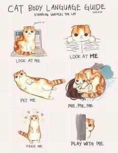 Me, Me, Me <3