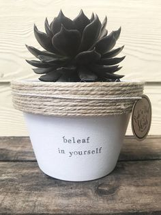 Hi there from Rub A Dub Shrub!! We think this would be an unbe-leaf-able present! ! Why not send this pot for a birthday? An anniversary? Mothers Day? or even for a House warming? Its cheaper than sending flowers and a whole lot of fun! We are a mother/daughter team from sunny Adelaide,