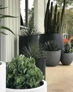 Modern Outdoor Big Concrete Planters Pots - Unique Balcony & Garden Decoration and Easy DIY Ideas Balcony Planters, Balcony Garden, Garden Planters, Potted Garden, Balcony Flowers, Cactus Rock, Cactus Flower, Flower Planters, Outdoor Planters