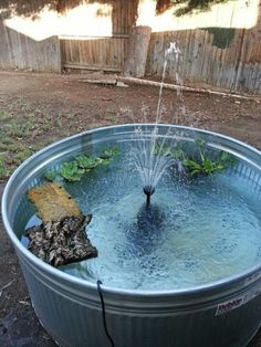 DIY BackYard Turtle Pond Designs Ideas 20