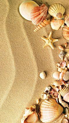 Seashells n sand Ocean Wallpaper, Summer Wallpaper, Cute Wallpaper Backgrounds, Pretty Wallpapers, Colorful Wallpaper, Nature Wallpaper, Wallpaper Quotes, Cellphone Wallpaper, Iphone Wallpaper