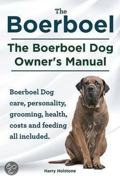 Boerboel Temperament | Boerboel. the Boerboel Dog Owner's Manual. Boerboel Dog Care ...