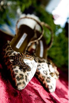 leopard_cheripearl1