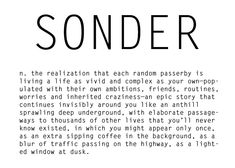 Sonder (n) the realization that each random passerby is living a life as vivid and complex as your own