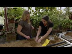 Oklahoma Aquaponics - OETA Show | Symbiotic Aquaponic | Let's Grow Together! Aquaponics info and systems - One of their older systems. New systems are super easy to set up