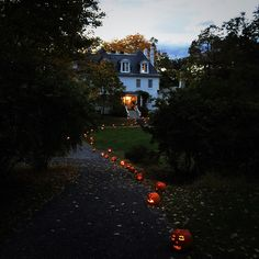 Pumpkin Path for Halloween | Content in a Cottage