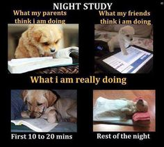 study study