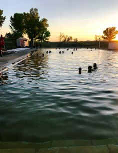 Dive into the Utah desert's trove of beautiful natural hot springs with this long weekend road trip itinerary Natural Baths, Organic Gardening Magazine, Desert Sunset, Organic Plants, Canada Travel, Hot Springs, Vacation Spots, Utah, National Parks