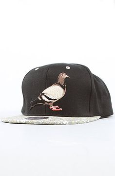Staple The MN Pigeon Snapback in Black