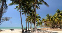 Tropical Paradise - Port Douglas Seclusion