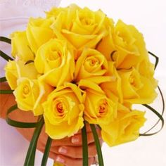 Yellow roses!!!!