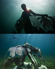 Undersea art, near Cancun, using live purple fan coral, much of which had been recently displaced in a storm.  British sculptor Jason deCaires Taylor