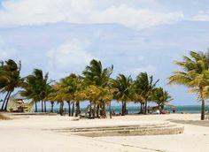 Crandon Park Beach is 2 miles of white sandy beach on the Atlantic Ocean (Key Biscayne, Florida)