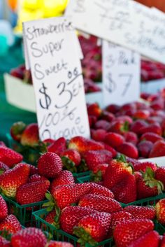 strawberries at the market How To Store Strawberries, Harvest Market, Vegetable Stand, Fruit Stands, Delicious Fruit, Simple Pleasures, Organic Recipes, Farmers Market, Strawberry Farm